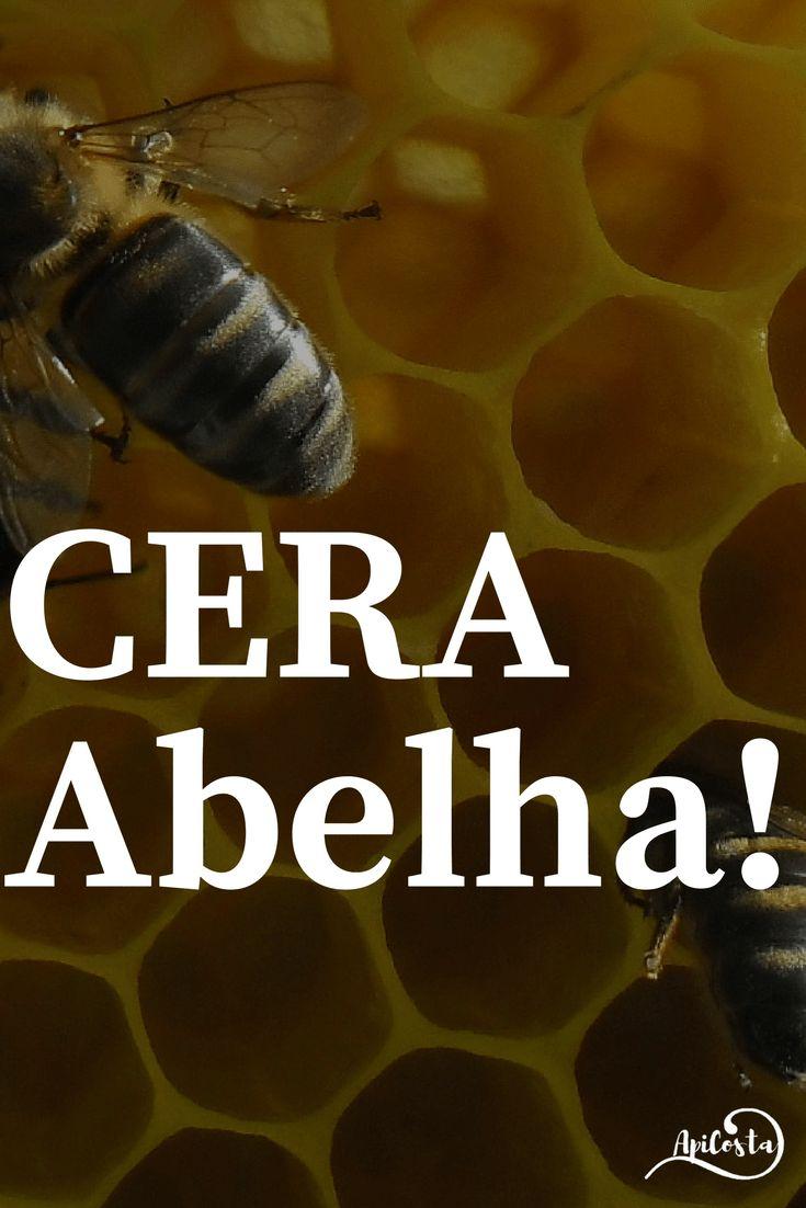 ACera de Abelhaé uma das substâncias mais interessantes produzidas pelas Abelhas. cera de abelha apicultura abelhas colmeias bees beekeeping apicultura natural fazer dinheiro com apicultura mel pólen zangões criação de abelhas abelhas de mel abelha melifera ganhar dinheiro com apicultura apicultura online trabalhar em casa permacultura agricultura apicultor colmeia top bar colmeia warré apicosta