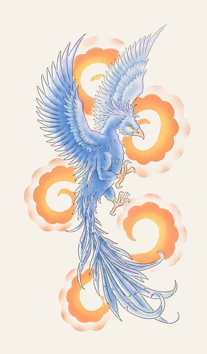 Colorful phoenix tattoo designs - Phoenix Tattoo Design By Primitive Art On Deviantart