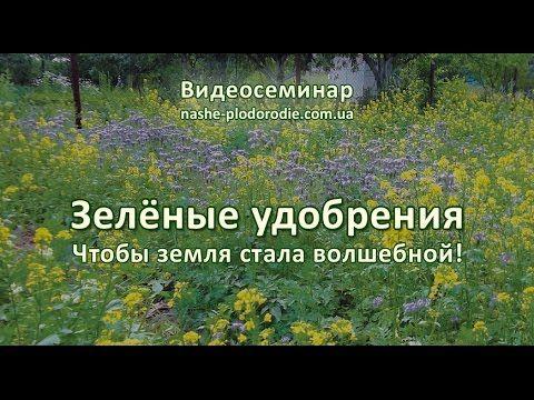 Наше плодородие - Наше плодородие: Видео
