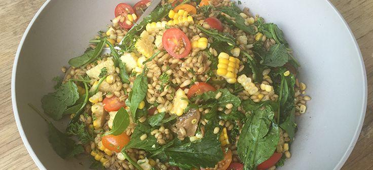 Summer pearl barley, corn & tomato salad