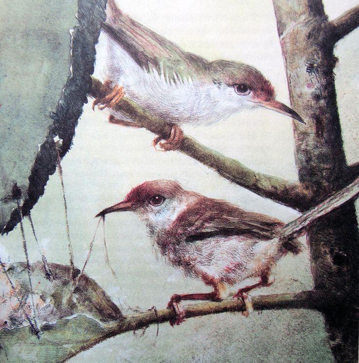 """Роберт Ингпен. Иллюстрация из книги """"Книга джунглей"""". Издательство Махаон."""