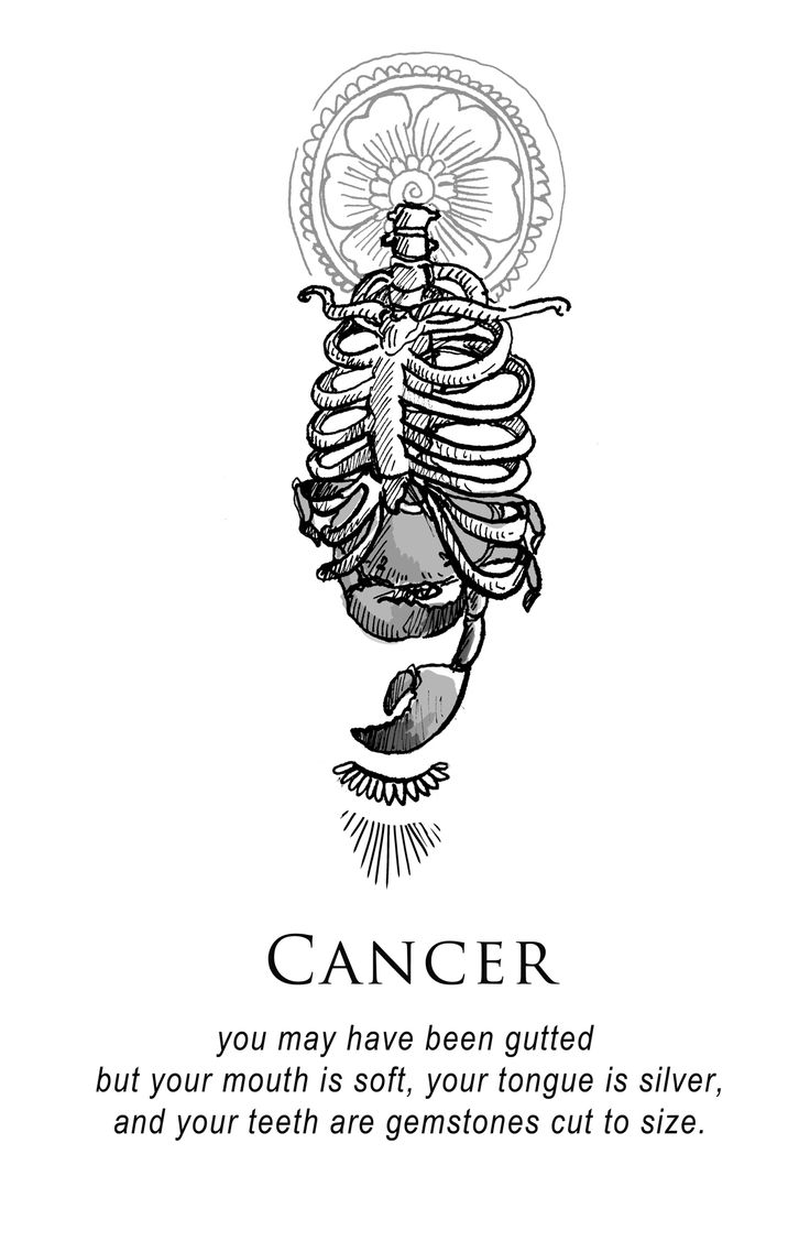 Cancer - Shitty Horoscopes Book VI: After the Fall by musterni After The Fall, Astrology Zodiac, Pisces, Krebs Tattoo, Signes Zodiac, Half Elf, Illustration Tattoo, Cancer Horoscope, Cancer Zodiac Art