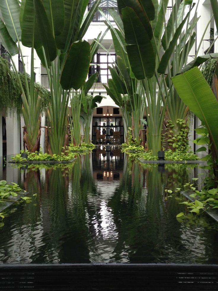 Jardim de inverno central com vasos cercados por água. Fotografia…
