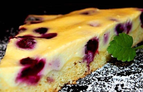 Tvarohový koláč s borůvkami II.