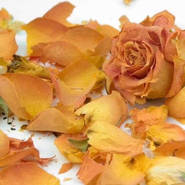 1000 ideas about dried rose petals on pinterest drying