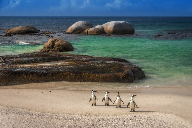 Your South Africa Travel Guide | The Planet D
