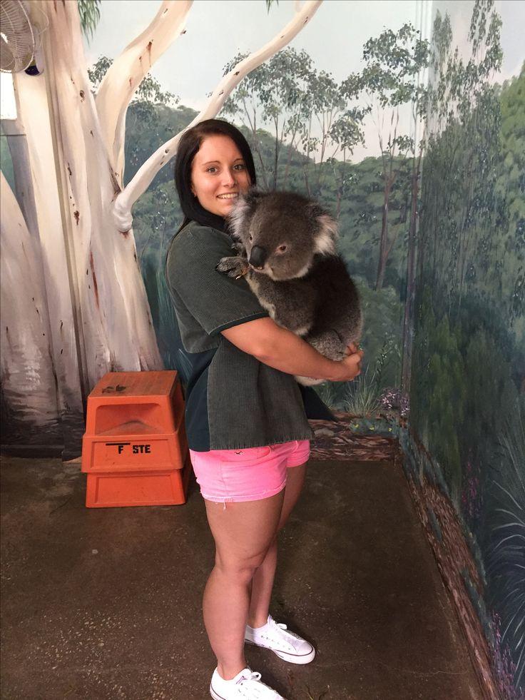 Koala cuddle 🐨 ✅