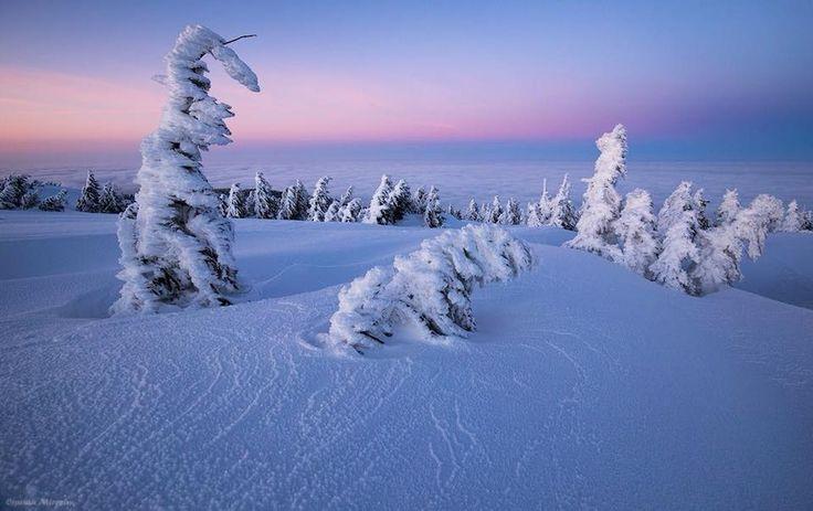 Munții Vlădeasa Foto: Ciprian Mireșan  #21milioane #romani #romania #muntii #muntiiromaniei #vladeasa #peisaje #iarna
