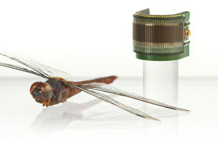 Plug-and-play artificial compound eye for robotic applications: http://robohub.org/plug-and-play-artificial-compound-eye-for-robotic-applications/