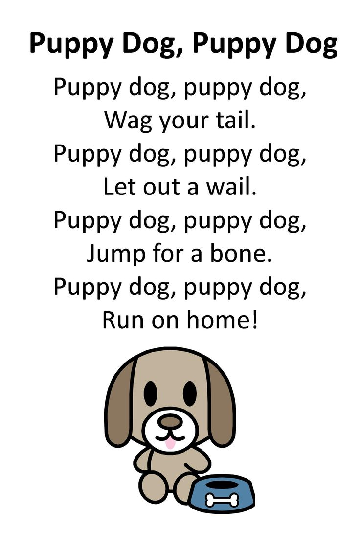 Puppy Dog Poems For  Year Olds