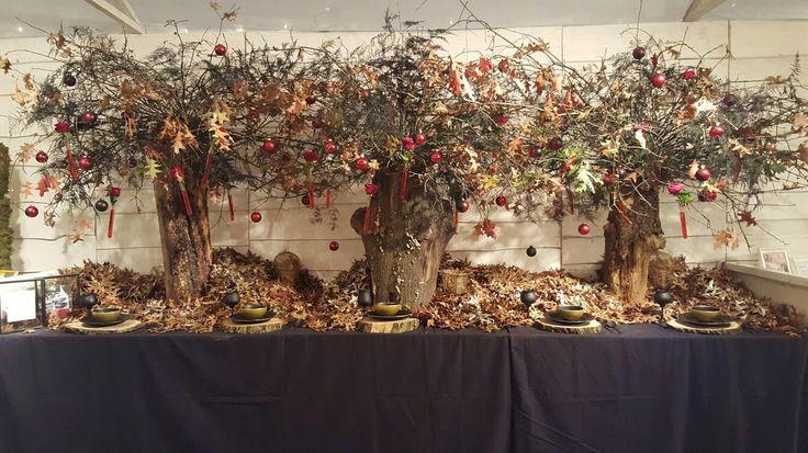 Kerstmarkt 2016 #thema #duistere #kerst