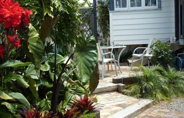 New Zealand Garden