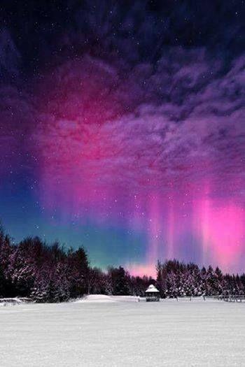 Incrível aurora boreal rosa sobre a Noruega