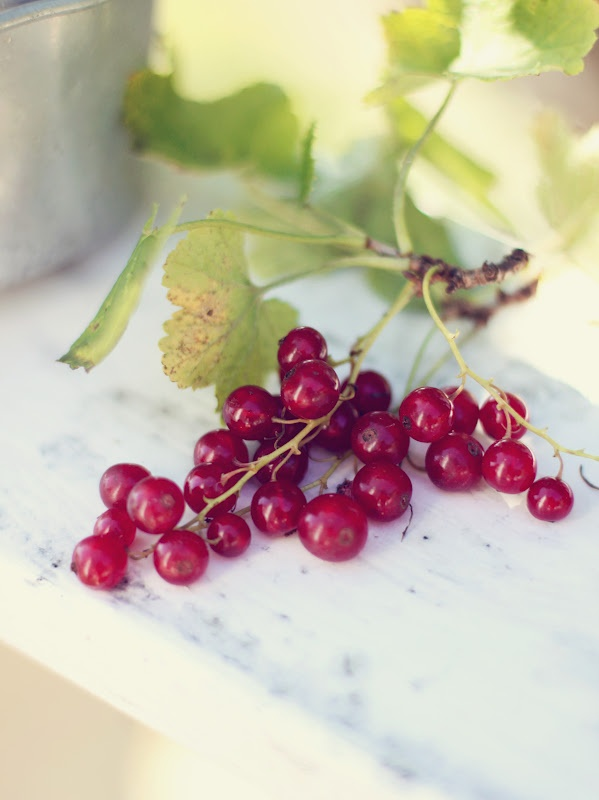 275 best Les Fruits Rouges images on Pinterest | Red, Red ...