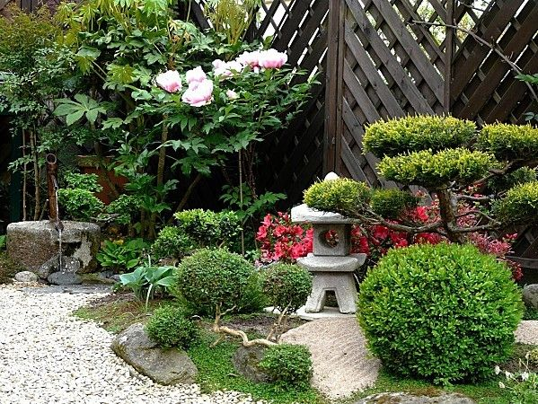 148 best images about jardin on pinterest gardens for Massif jardin japonais