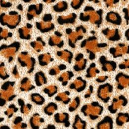 Cheetah Fur film for Hydro Dipping or Hydrographic Printing