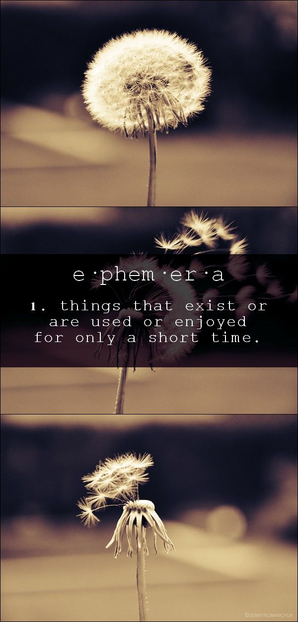 unique words - ephemera. Click photo for SOURCE of the photo.