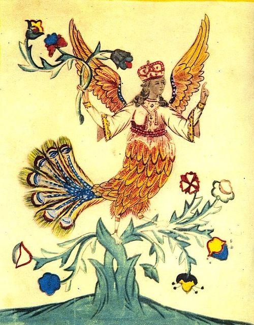 Райская Сирины лубок (Sirin Luboks | Сирин лубка) Птицы.