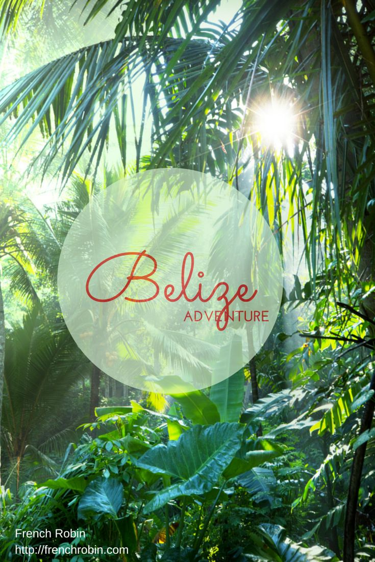 We travelled to the beautiful country of Belize. Here is the Belize Adventure Travel Journal with all the reasons you should visit as well. Stunning history, culture, food, and people.