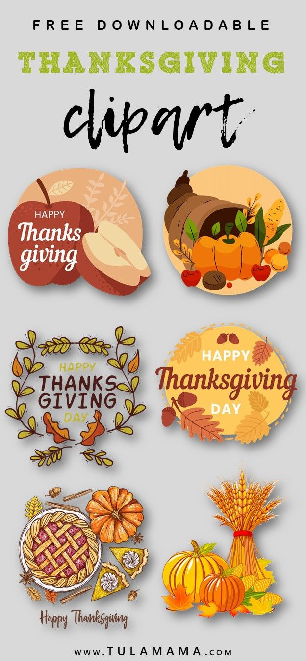 28+ Free thanksgiving clipart transparent background ideas