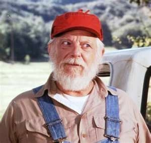 Image Search Results for dukes of hazzard
