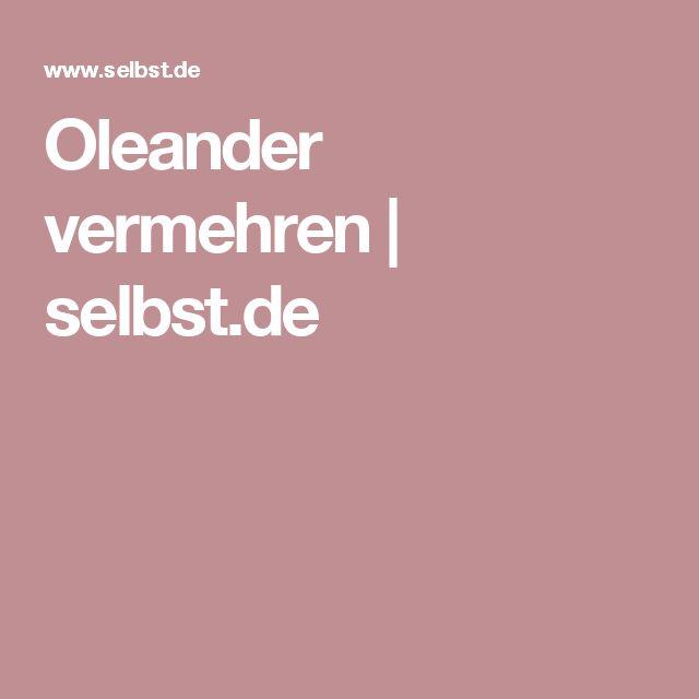 Oleander vermehren | selbst.de