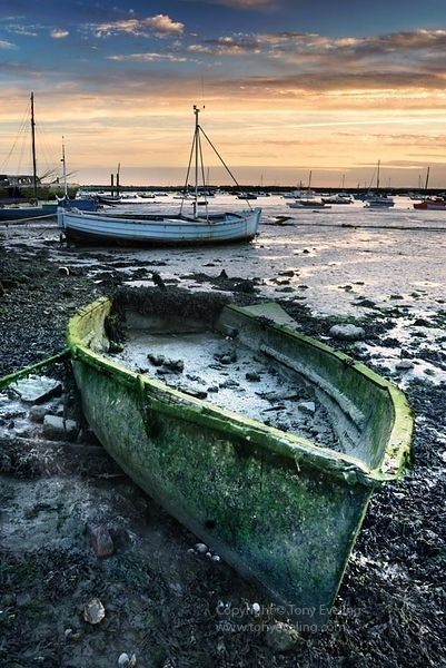 Harbour, West Mersea, essex,england,uk