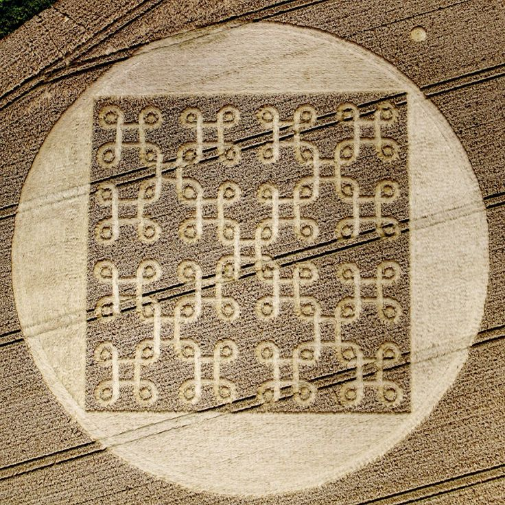 Crop Circle at Cheesefoot Head, Hampshire : 9th August 2012 -