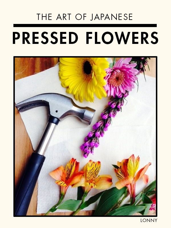 The Art Of Japanese Pressed Flowers Japanese Flowers Flowers