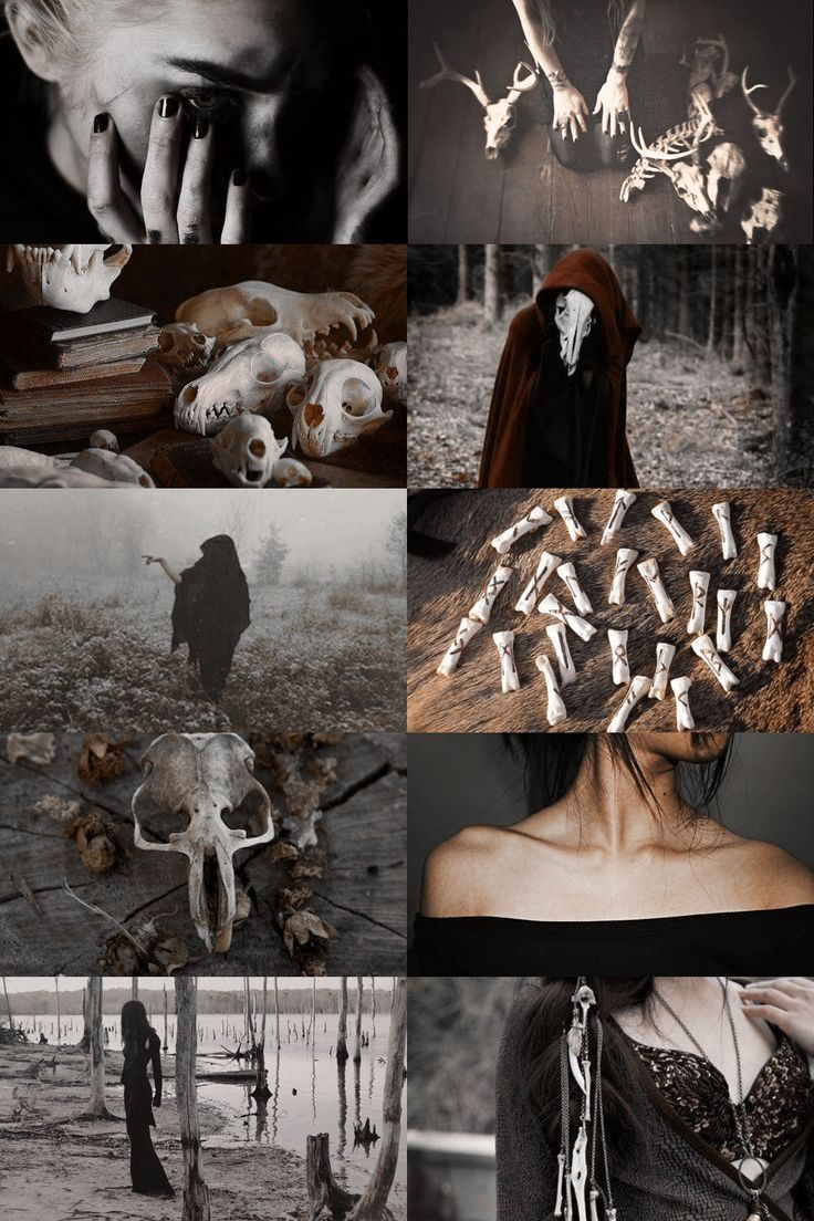 — skcgsra:   bone witch aesthetic (more here)