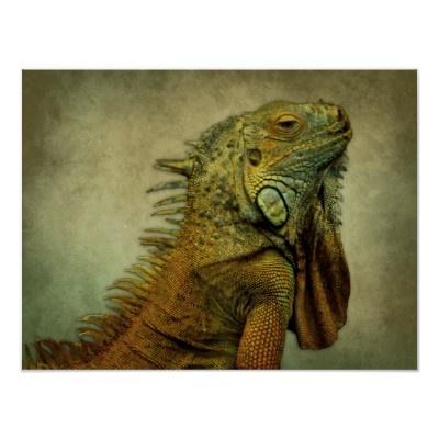 Green iguana with green grunge background on poster. #green #iguana #cute #pets $13.90