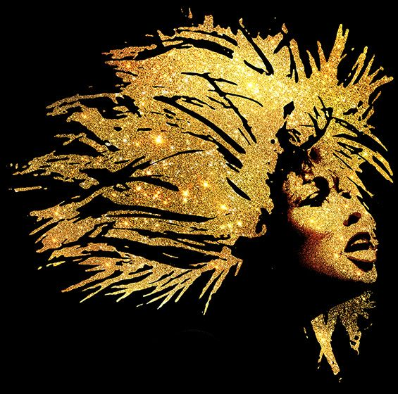 The official stage musical of music legend Tina Turner is NOW ON SALE.