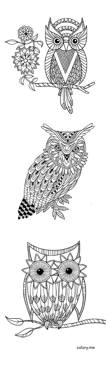 Adult coloring page from Colory App. 300+ coloring pages are available for  coloring lovers