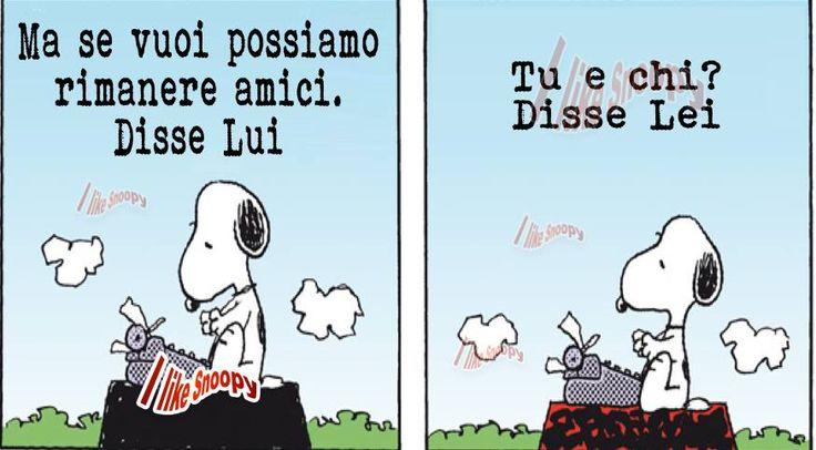 Snoopy: Fraintendimenti.................Misconceptions ..