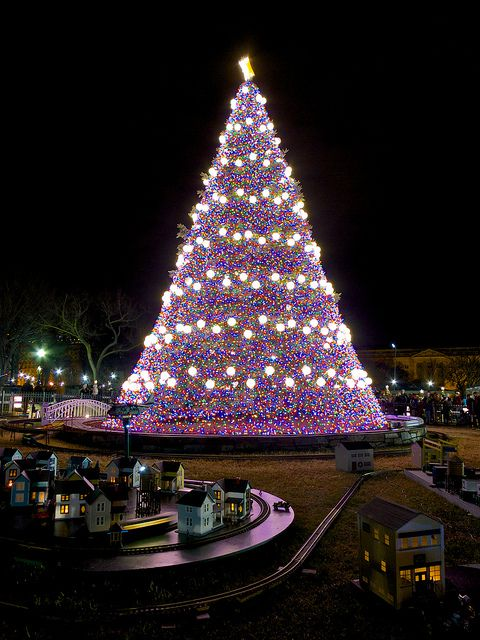 563 best christmas outdoor lights images on pinterest merry national christmas tree mozeypictures Image collections