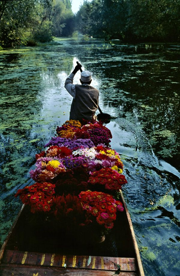 "Kashmir, India. This pic and comment were in one Martha M. Valencia's board: I remember this beautiful photograph from one of the very first editions of Polish ""National Geographic"". I even tried to paint it during one of our art lessons in primary school :)"