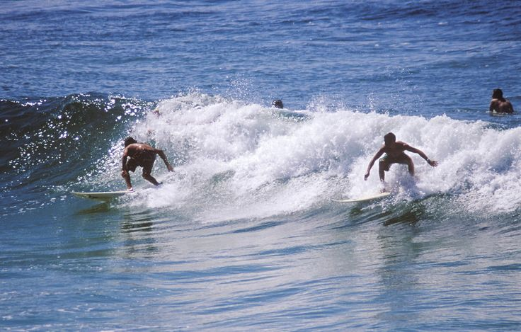 North coast beaches such as tweed coast beaches ideal for surfing. http://www.ozehols.com.au/blog/new-south-wales/holiday-rentals-in-kingscliff-to-explore-tweed-coast/ #holidaysintweedcoast #exploretweedcoast #tweed