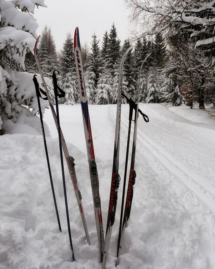 #crosscountryskiing #trip #snow #klubkocestuje #naturelovers #ski Přestávka 🗻❄️⛷🎿