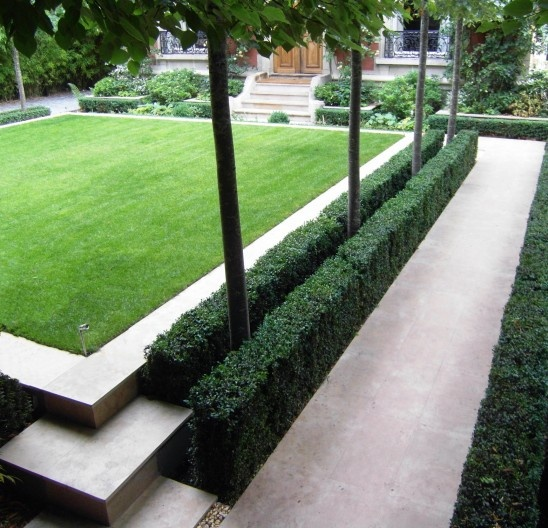 No Railing Needed - Shaved Boxwood and Pleached Hornbeams, France.