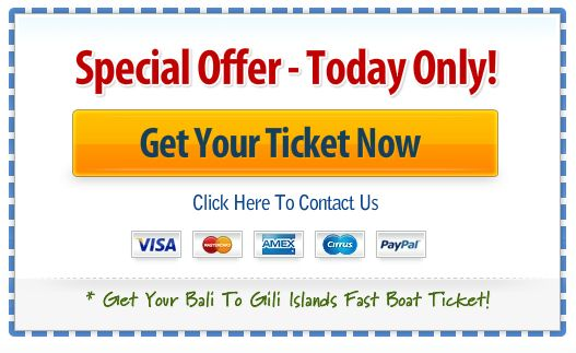 Get Bali to Gili Islands and Lombok fast boat ticket. New Year 2014.