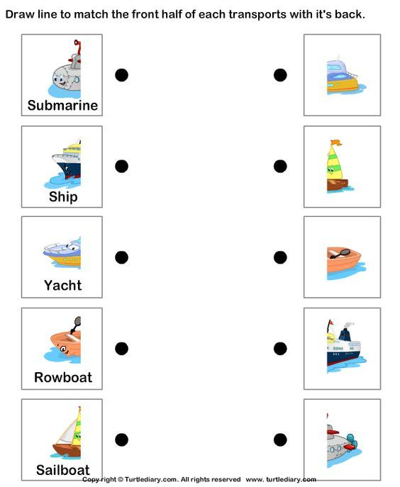 Water Transport worksheet and coloring