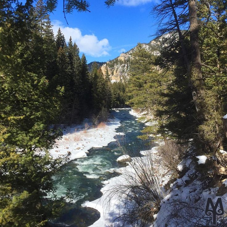 Gain fantastic views of the Gallatin River merely by walking along the Squaw Creek road, which is closed to cars and trucks in the Winter time.