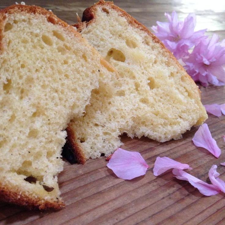 la veneziana con licoli è una soffice fugassa tipica di venezia che si prepara nel periodo pasquale