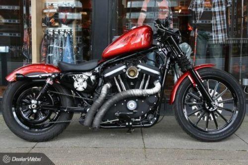 Harley-davidson custom special sportster iron xl883 | Sportster iron
