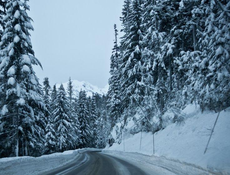NOAA: Mt Baker Under Winter Weather Advisory   Up To 17 Forecasted