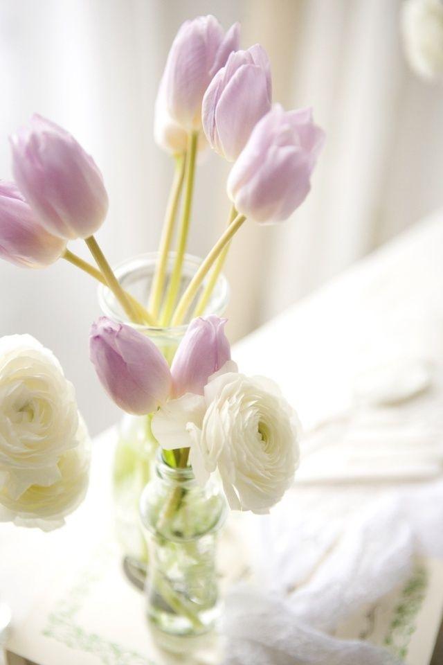 逆光の舞者采集到花 清香。(2868图)_花瓣摄影