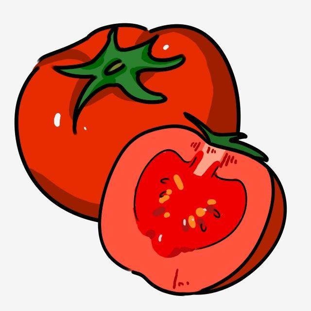 Ilustracion De Tomate Vegetal Rojo Cartoon Tomate Ilustracion Creativa De Tomate Ilustracion De Tomate Png Y Psd Para Descargar Gratis Pngtree Tomates Dibujo Dibujos Fondo De Mickey Mouse