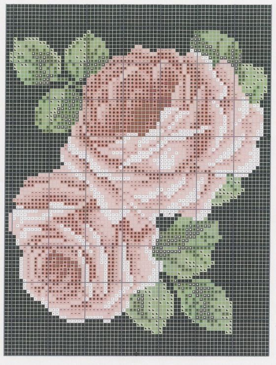 Gallery.ru / Фото #89 - розы разные - irisha-ira / dwia różowe róże 3/3