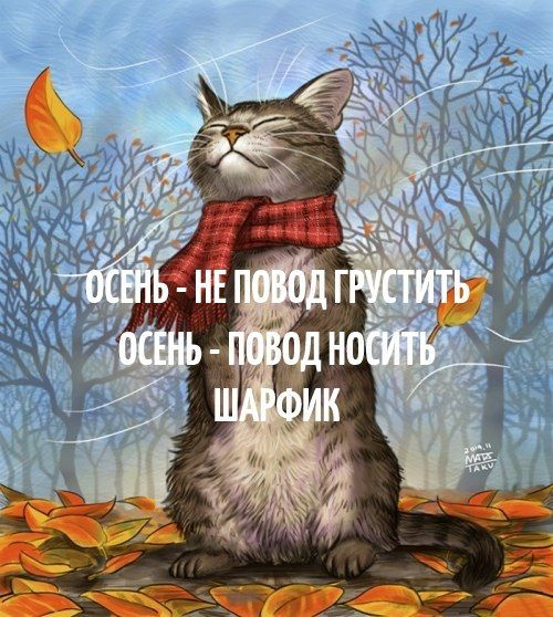 осень - не повод грустить