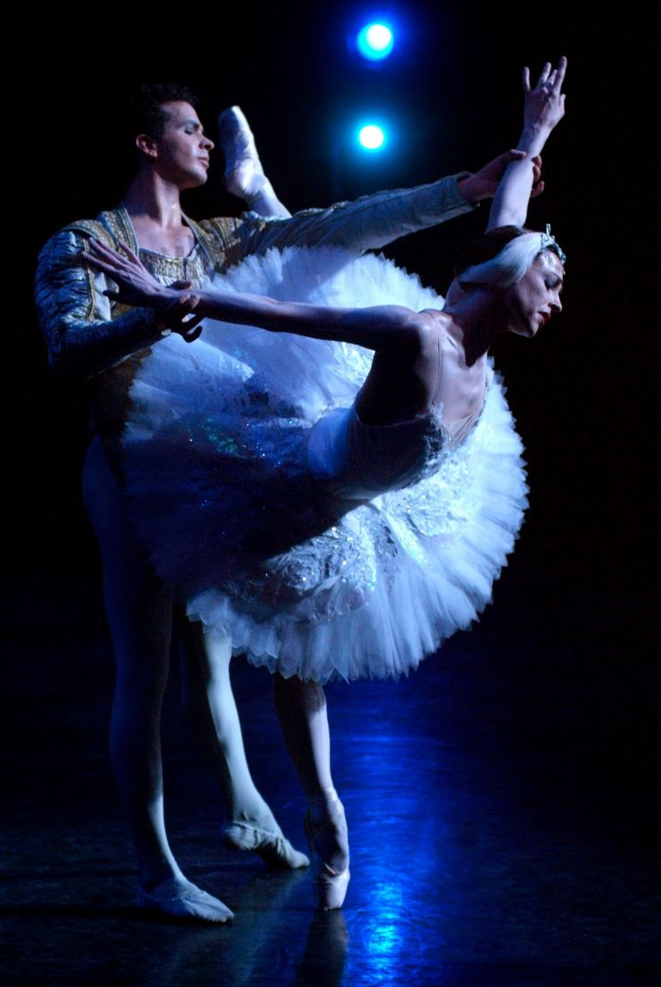 swan lake essay Swan lake vs revelations essay 750 words | 3 pages alvin ailey's revelations and tchaikovsky's swan lake are two different styles of dance from very different points in history.